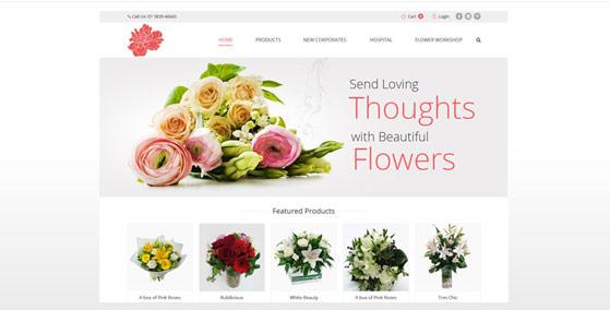Online Shop Portfolio Sample