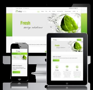 web design responsive mobile friendly